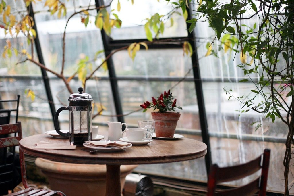 cafetiere coffee in a conservatory with plants