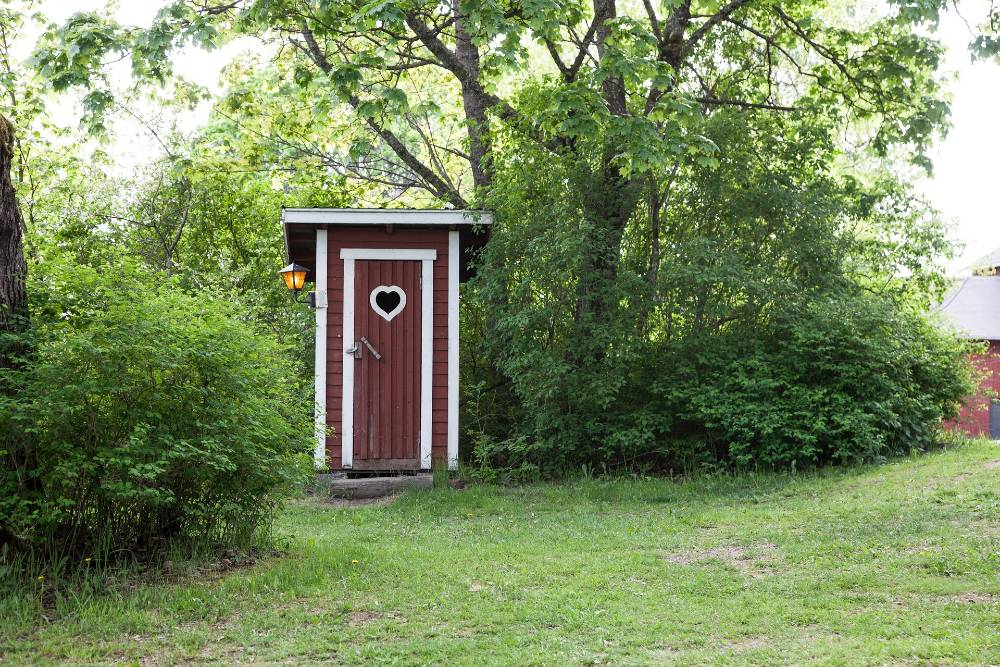 composting toilet cabin set near some trees