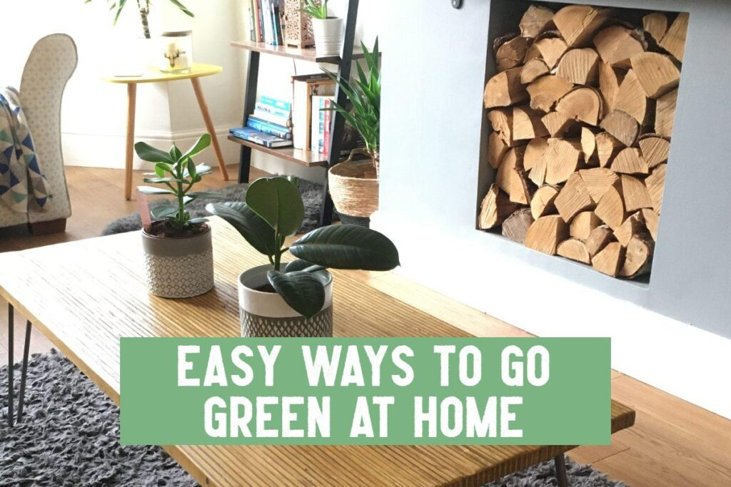 easy ways to go green at home