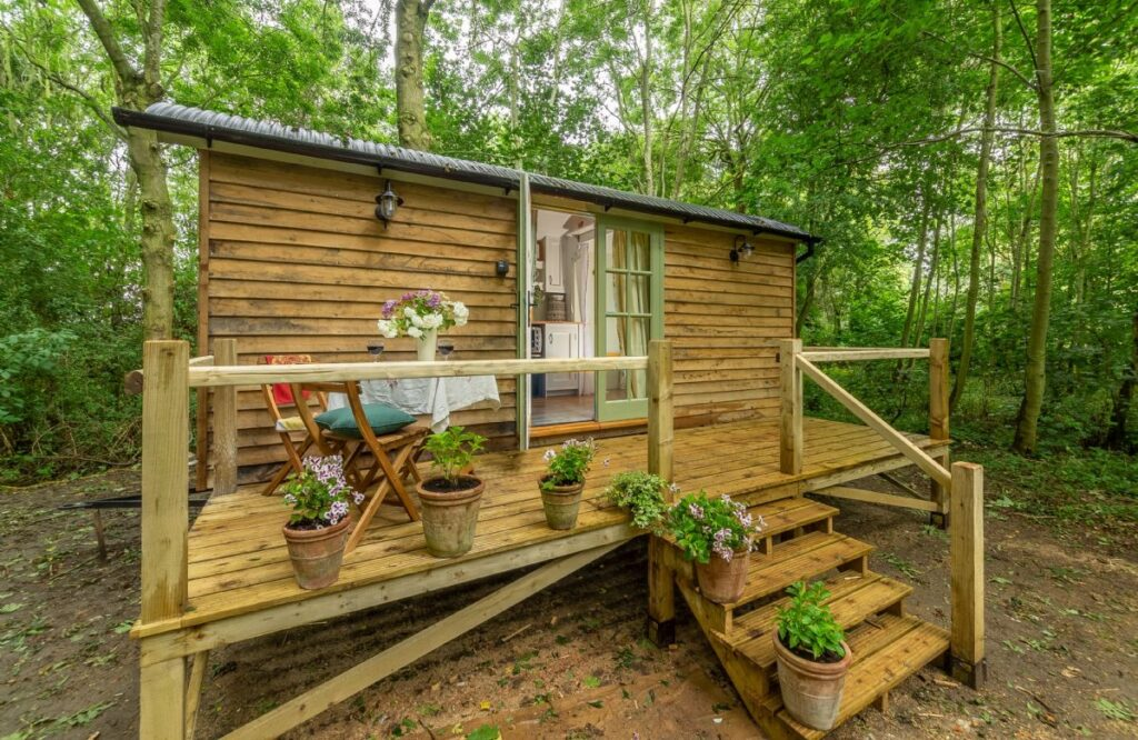 woodland shepherds hut retreat holiday