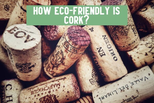 is cork eco friendly and good for the environment