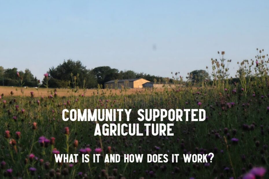 community supported agriculture farm title