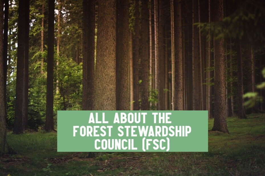 forest stewardship council what is fsc