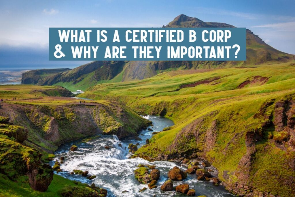 what is a certified b corp and why are they important