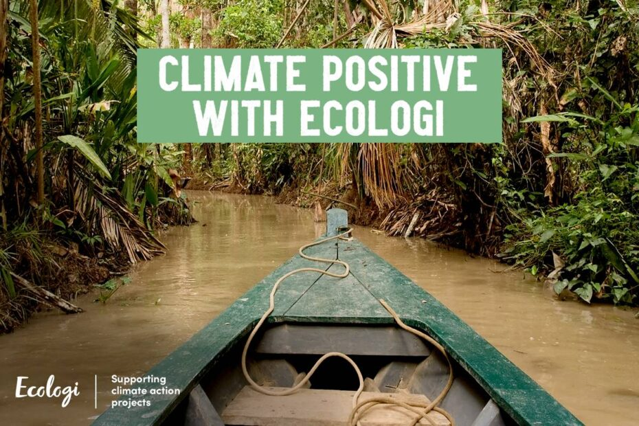 climate positive organisations with ecologi