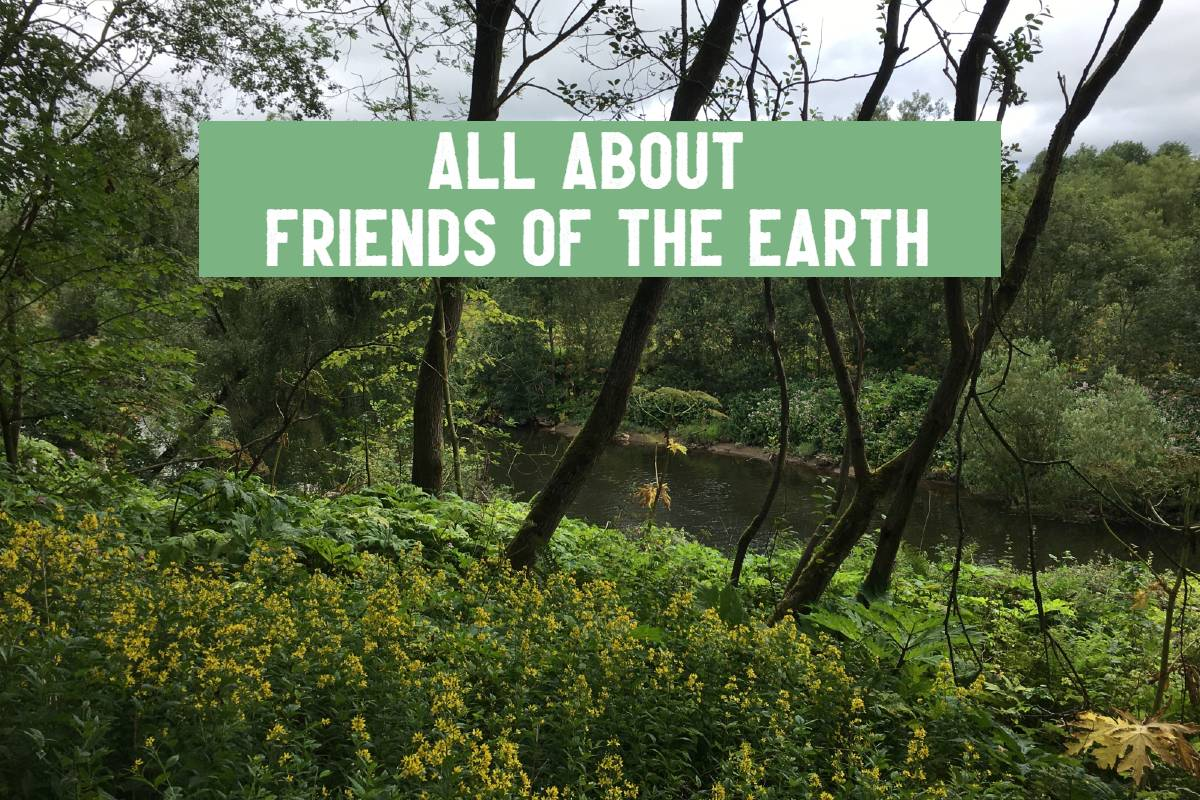 friends of the earth header with forest and river environment