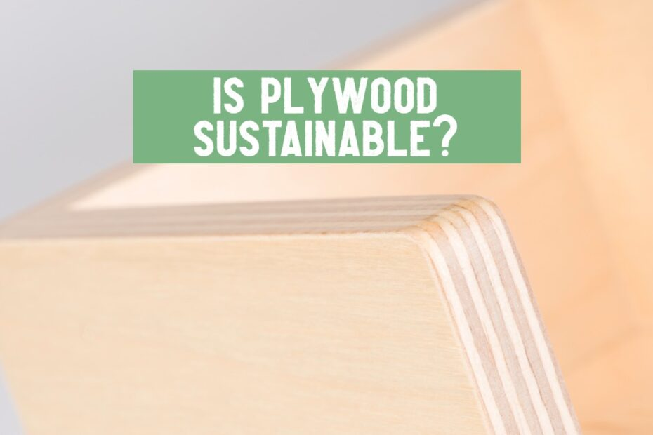 is plywood sustainable