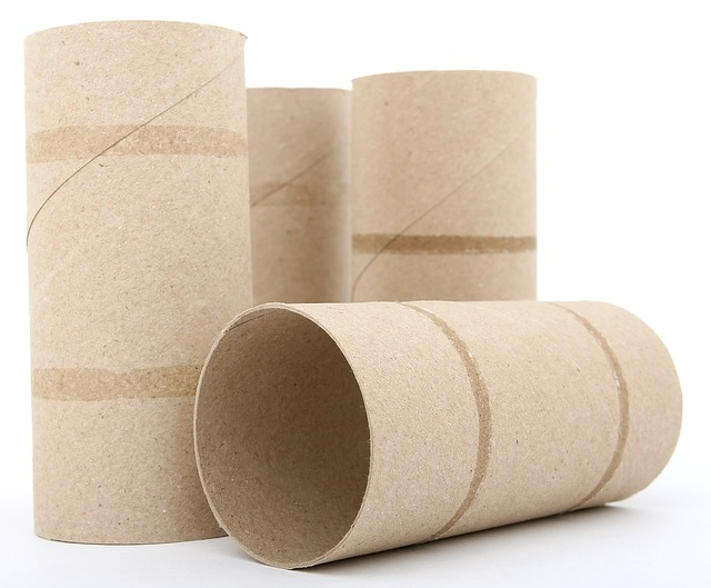cardboard toilet roll tube is biodegradable