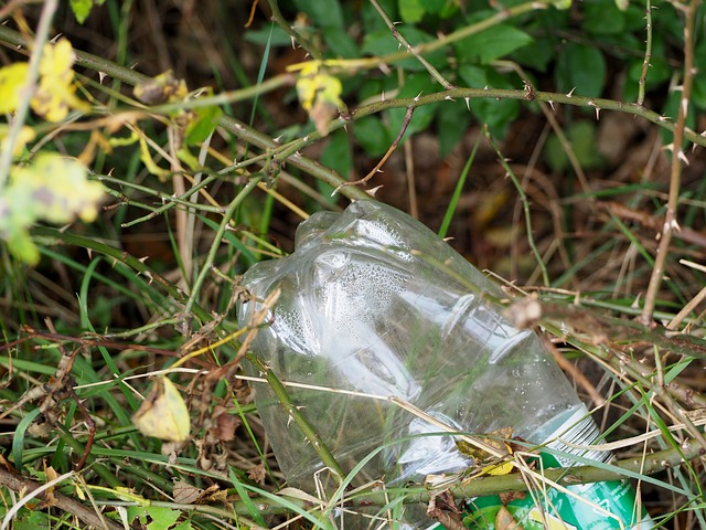 plastic bottle in the natural environment