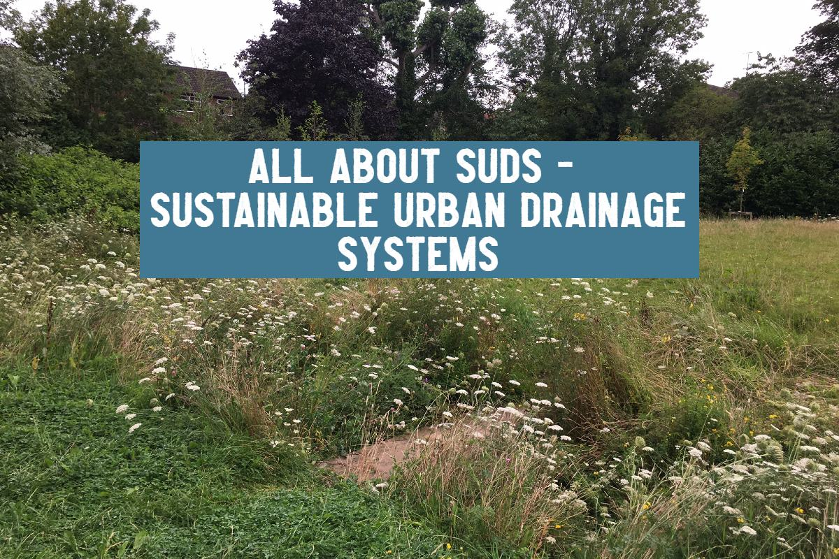 Sustainable urban drainage systems title